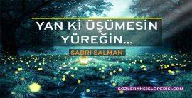 Sabri Salman Sözleri ve Şiirleri