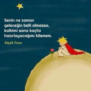 küçük prens anlamlı sözler