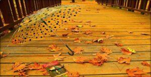 Ekim Ayı Aşk Şiirleri Kısa Uzun